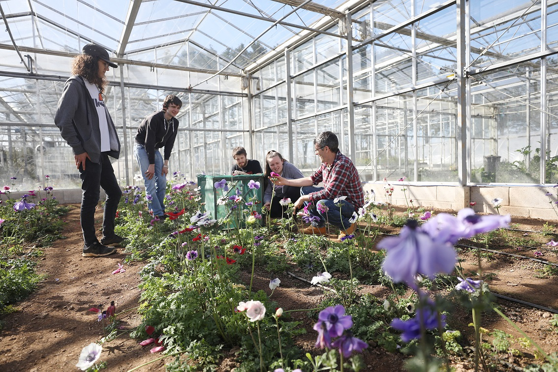Group pf horticulture students in greenhouse
