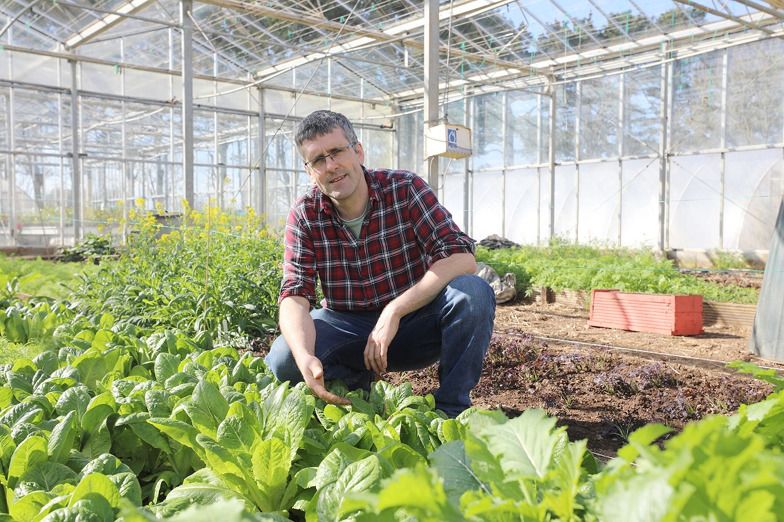Horticulture tutor in greenhouse